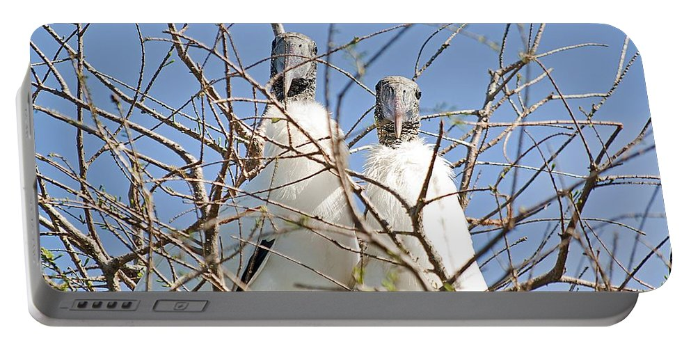 Stork Portable Battery Charger featuring the photograph The Happy Couple by Kenneth Albin