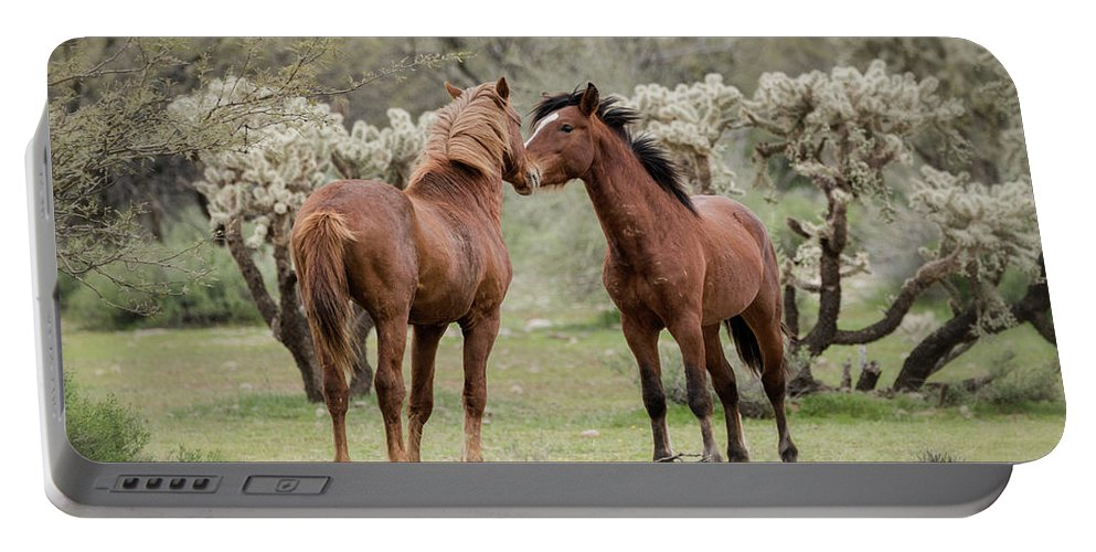 Wild Horses Portable Battery Charger featuring the photograph The Hello by Saija Lehtonen