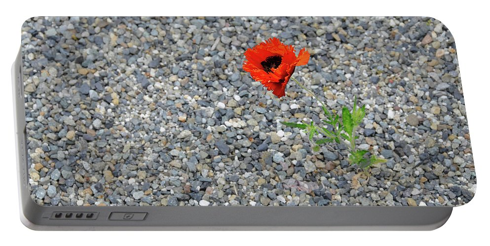 Poppy Portable Battery Charger featuring the photograph The Hopeful Poppy by Michael Bessler