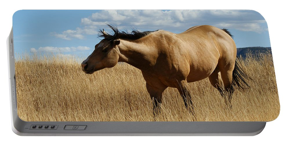 Horse Portable Battery Charger featuring the photograph The Horse by Ernie Echols