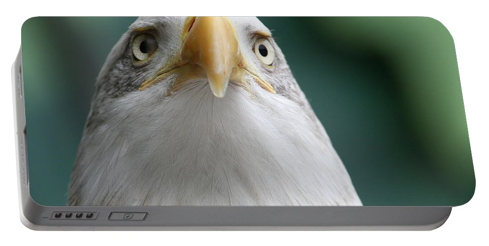 Eagle Portable Battery Charger featuring the photograph The Hunters Stare by Laddie Halupa