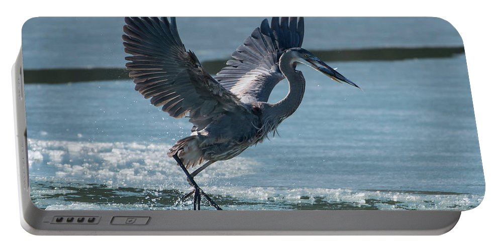 Great Blue Heron Portable Battery Charger featuring the photograph The Ice Skater by MCM Photography