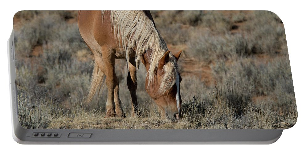 Cody Portable Battery Charger featuring the photograph The Joy of Nature by Frank Madia