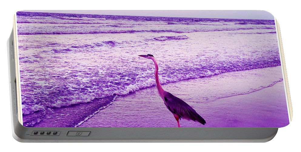 Shannon Portable Battery Charger featuring the photograph The Joy Of Ocean And Bird 2 by Shannon Sears