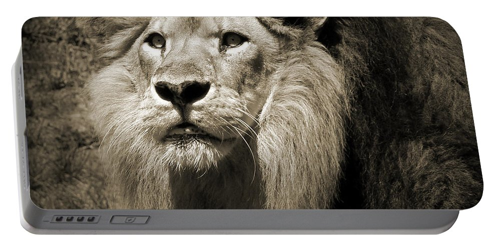 Lion Portable Battery Charger featuring the photograph The King II by Steven Sparks