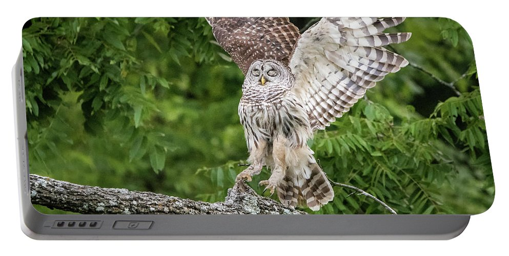 Nature Portable Battery Charger featuring the photograph The Landing by Linda Shannon Morgan