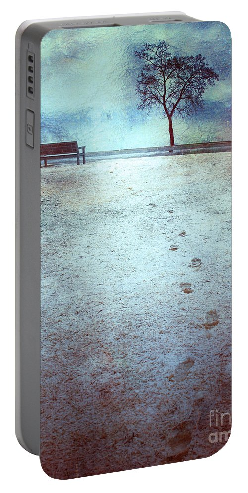 Bench Portable Battery Charger featuring the photograph The Last Snowfall by Tara Turner