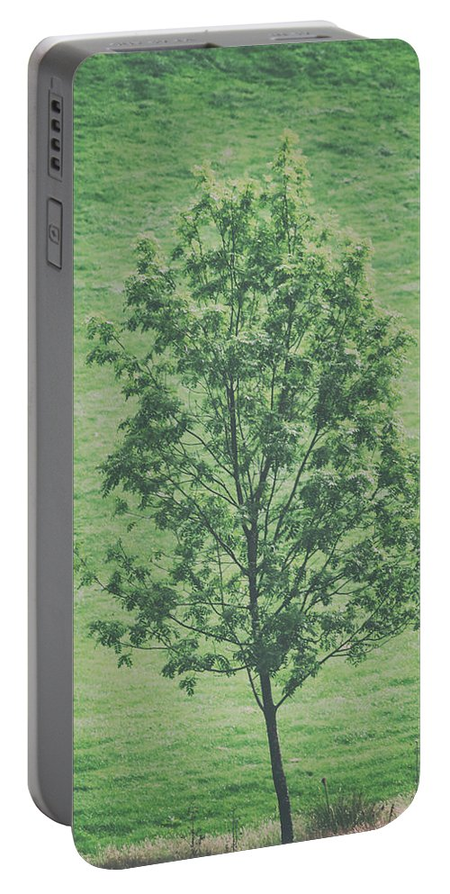 Nature Portable Battery Charger featuring the photograph The Lonely Tree by Martin Newman