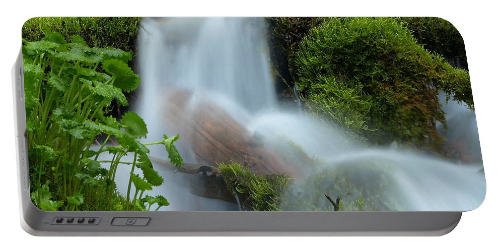 Water Portable Battery Charger featuring the photograph The Mossy Mist by DeeLon Merritt