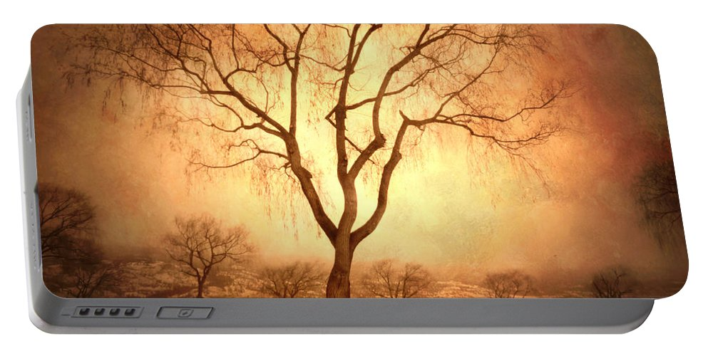 Trees Portable Battery Charger featuring the photograph The Mother Tree by Tara Turner