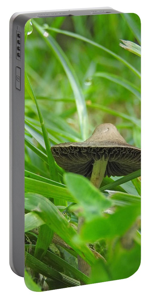 Ann Keisling Portable Battery Charger featuring the photograph The Mushroom by Ann Keisling