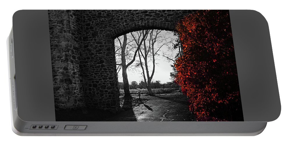 Trees Portable Battery Charger featuring the photograph The Other Side by Janice Mezzacappa