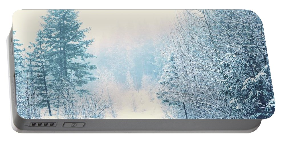 Winter Portable Battery Charger featuring the photograph The Pale Kiss Of Winter by Tara Turner