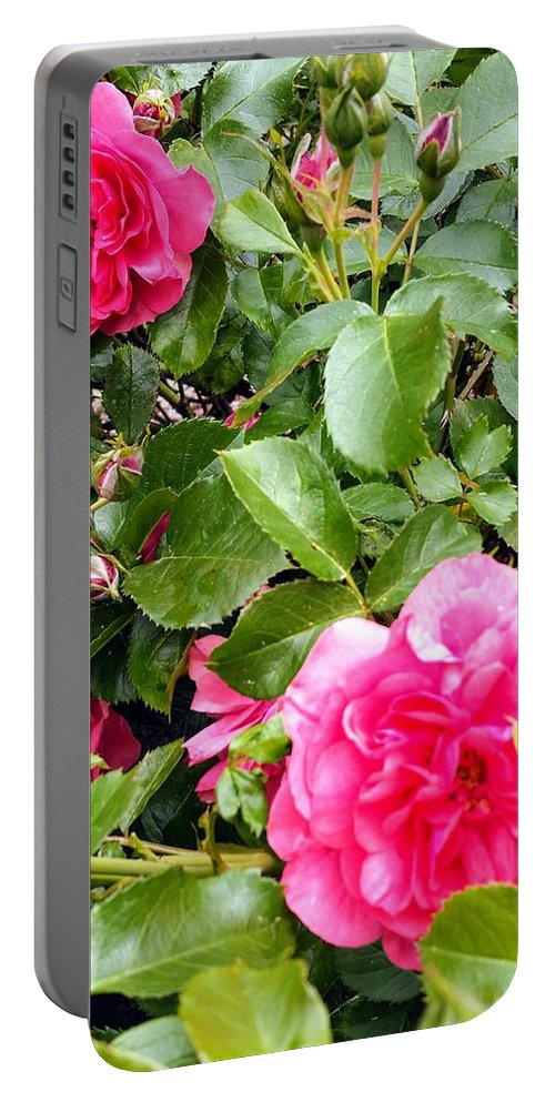 Botanical Flower's Nature Portable Battery Charger featuring the photograph The peaceful place 10 by Valerie Josi