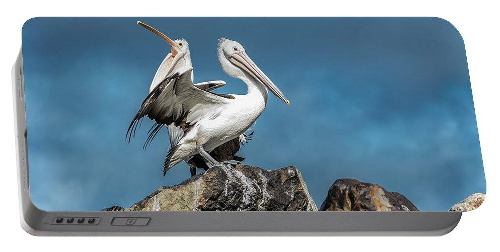 Pelican Portable Battery Charger featuring the photograph The Pelicans by Racheal Christian