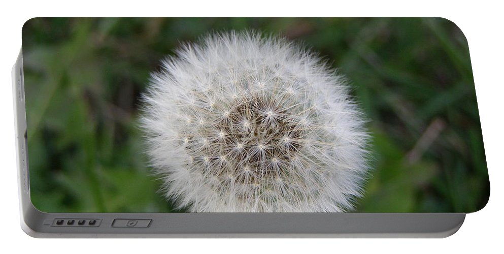 Flower Portable Battery Charger featuring the photograph The Perfect Dandelion by DeeLon Merritt