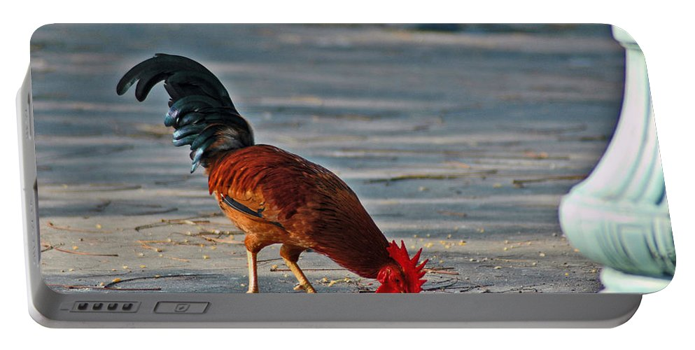 Rooster Portable Battery Charger featuring the photograph The Picking Rooster by Susanne Van Hulst