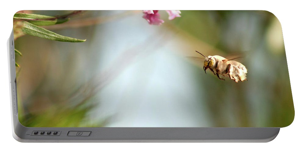 Bee Portable Battery Charger featuring the photograph The Pollinator by Alycia Christine