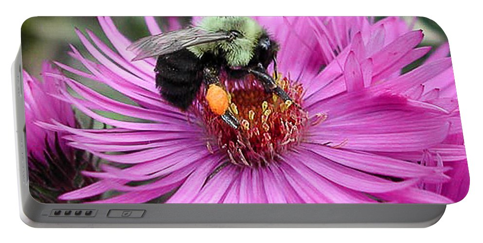 Bee Portable Battery Charger featuring the photograph The Pollinator by Patricia Bolgosano