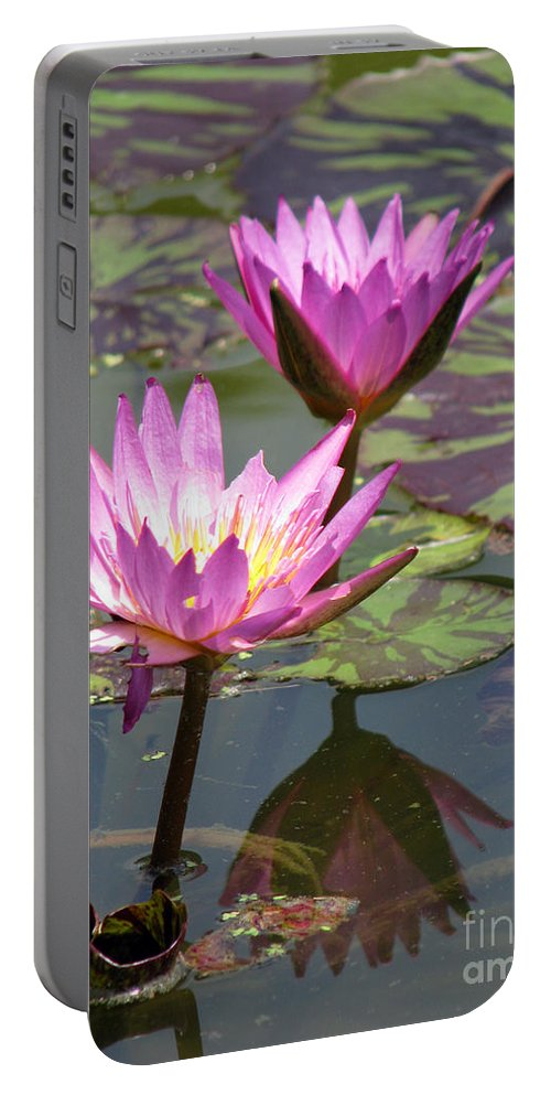 Lillypad Portable Battery Charger featuring the photograph The Pond by Amanda Barcon