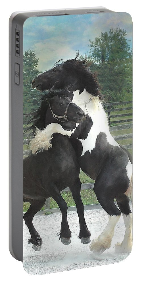 Horses Portable Battery Charger featuring the photograph The Posturing Game by Fran J Scott