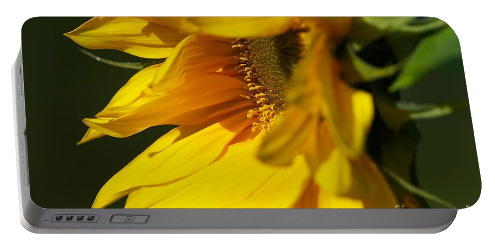 Sunflower Portable Battery Charger featuring the photograph The Promise by Sharon Talson
