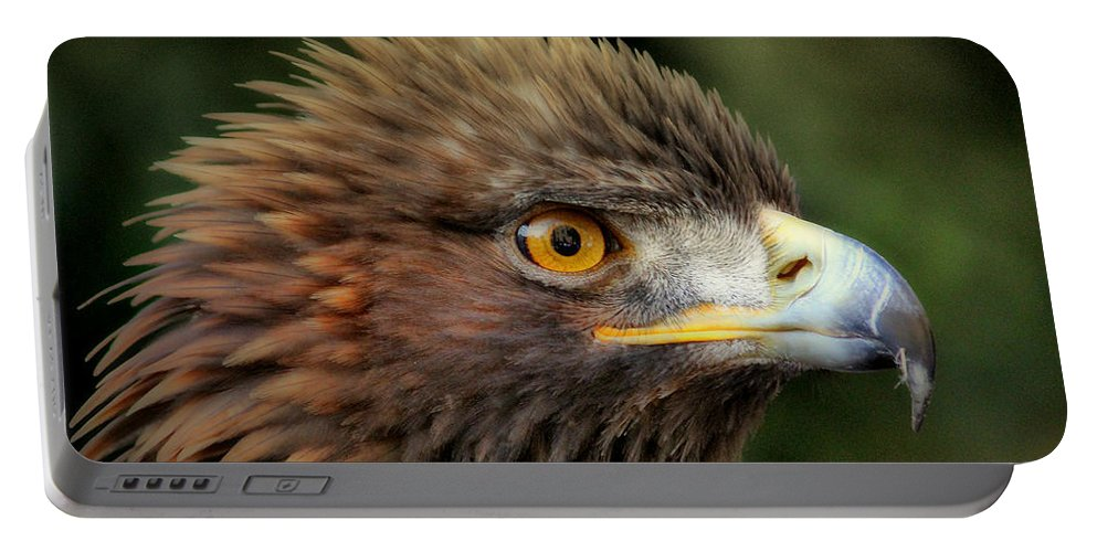 The Punk Portable Battery Charger featuring the photograph The Punk - Eagle - Bird Of Prey by Mary J Tait