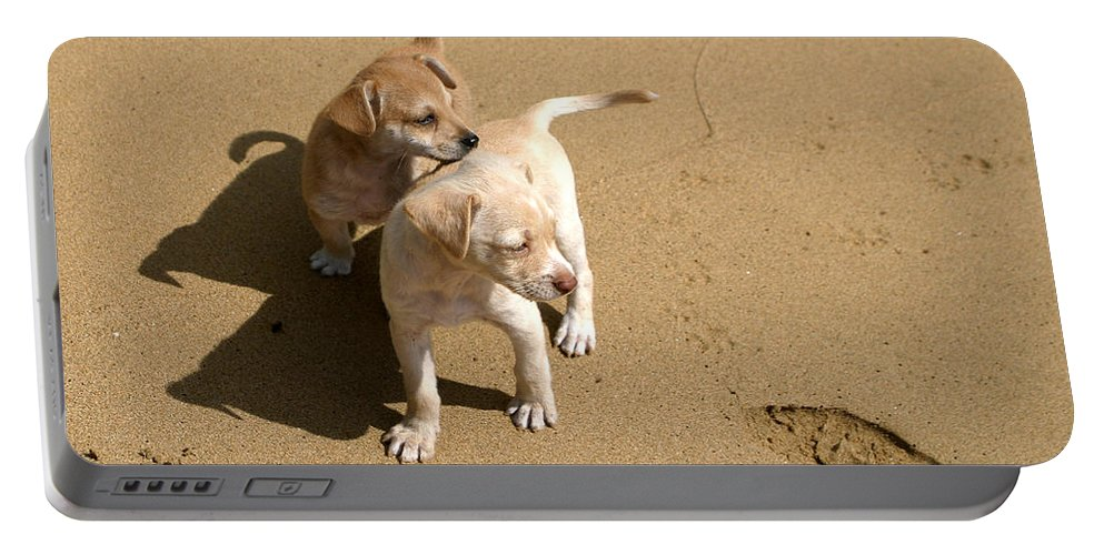 Dogs Portable Battery Charger featuring the photograph The Puppies by Madeline Ellis