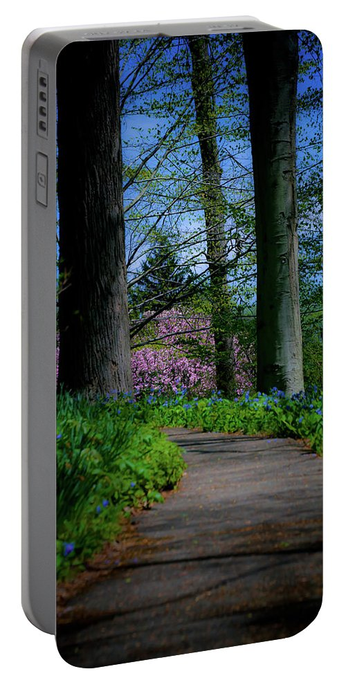 Trees Portable Battery Charger featuring the photograph The Road To Peace And Quiet by Trish Tritz
