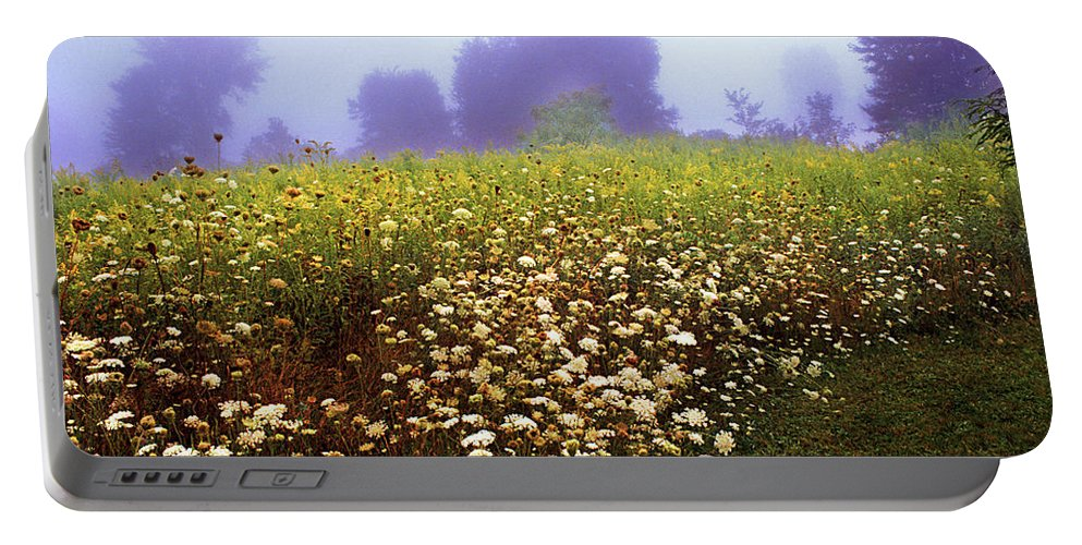 New York State Portable Battery Charger featuring the photograph The Secret Garden by Yuri Lev