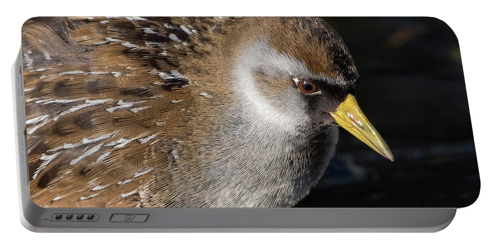 Sora Portable Battery Charger featuring the photograph The Sora by MCM Photography