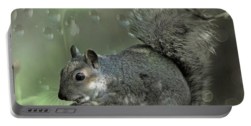 Squirrel Portable Battery Charger featuring the photograph The Squirrel by Angel Ciesniarska