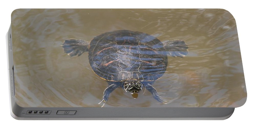Water Portable Battery Charger featuring the photograph The Swimming Turtle by Rob Hans