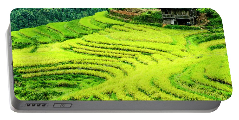 Rice Portable Battery Charger featuring the photograph The Terraced Fields Scenery In Autumn by Carl Ning