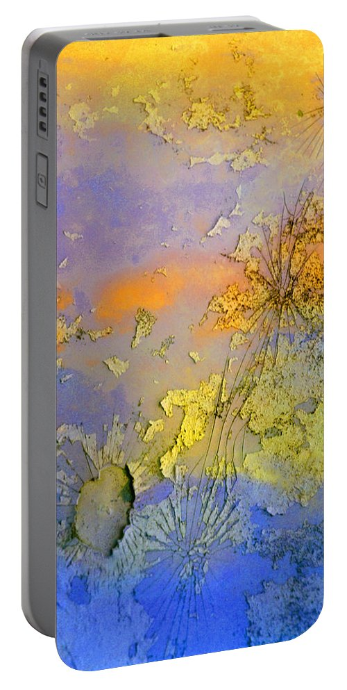 Abstract Portable Battery Charger featuring the photograph The Things We No Longer Find Beautiful by Tara Turner
