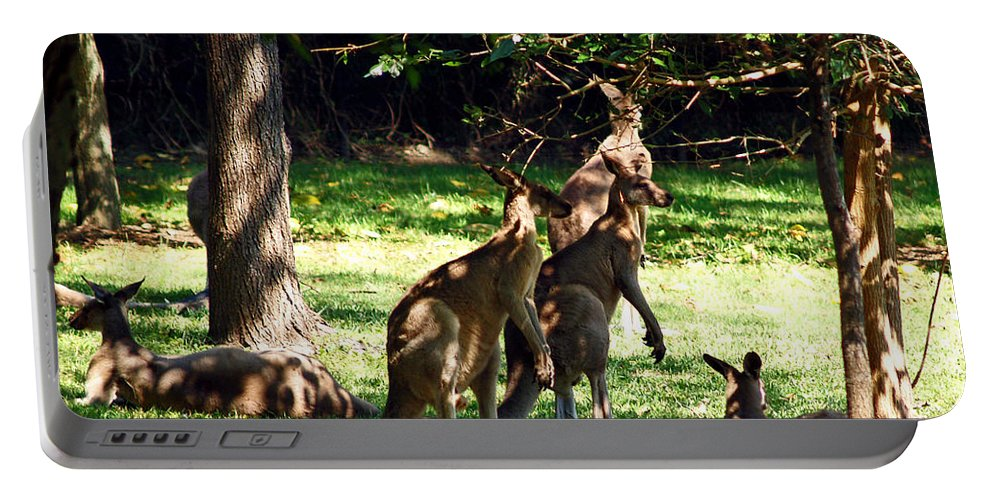 Fine Art Photography Portable Battery Charger featuring the photograph The Three Musketeers by Patricia Griffin Brett