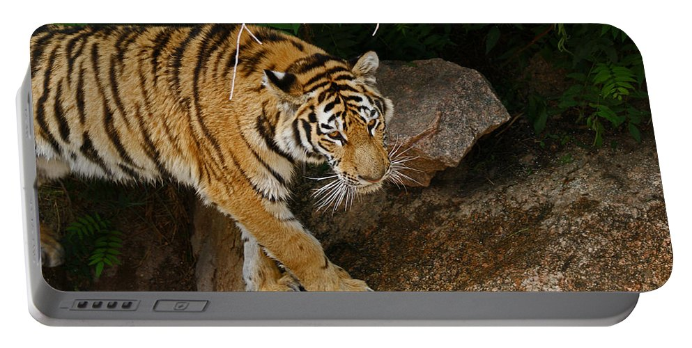 Tiger Portable Battery Charger featuring the photograph The Tiger by Ernie Echols
