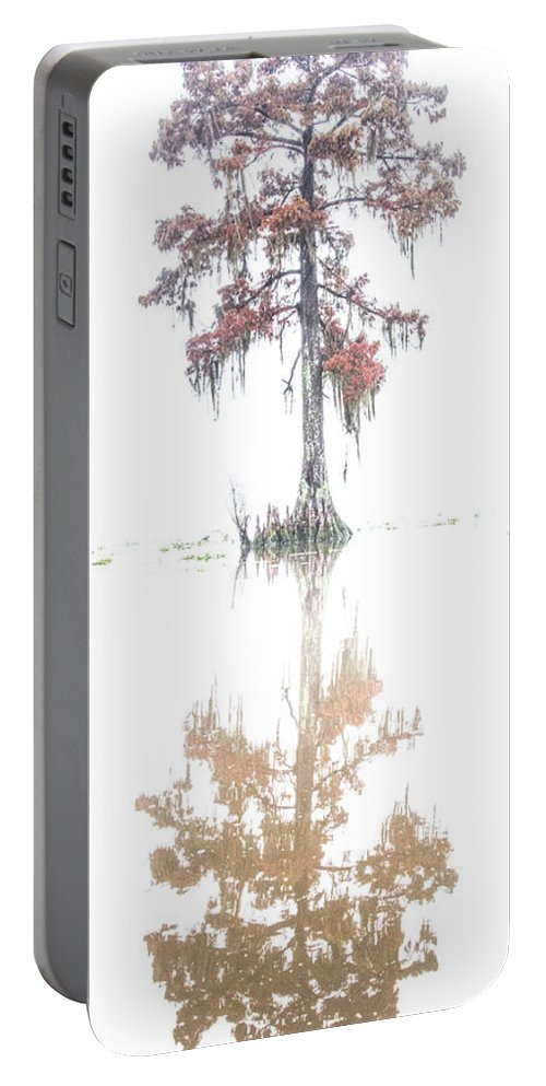 Lake Maurepas Portable Battery Charger featuring the photograph The Upside Down In Color by Andy Crawford