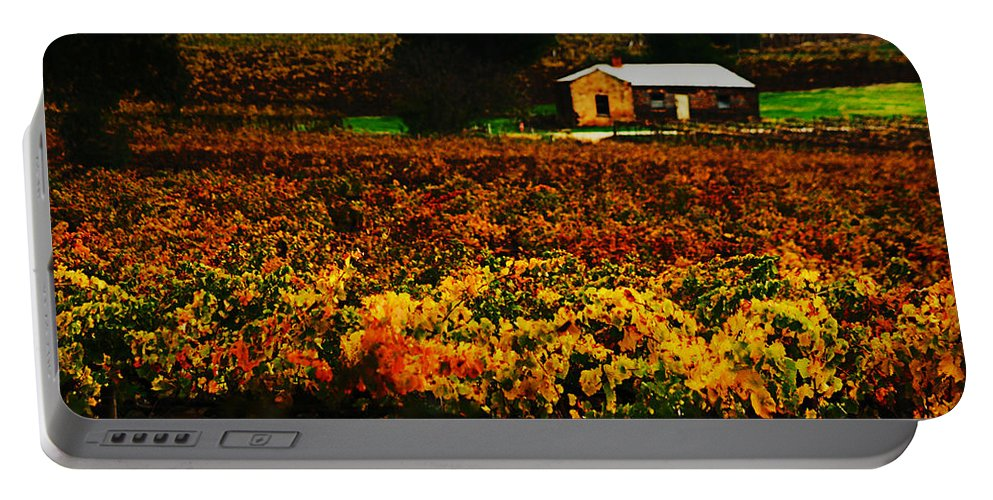 Autumn Portable Battery Charger featuring the photograph The Vines During Autumn by Douglas Barnard