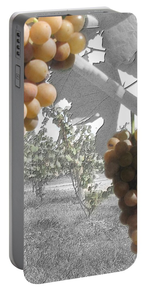 Grapes Portable Battery Charger featuring the photograph The Vineyard 2 by September Stone