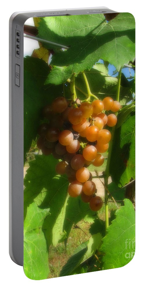 Grapes Portable Battery Charger featuring the photograph The Vineyard by September Stone