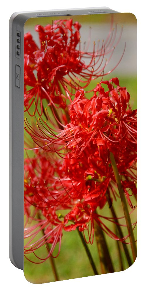 Photography Portable Battery Charger featuring the photograph The Virgins by Susanne Van Hulst