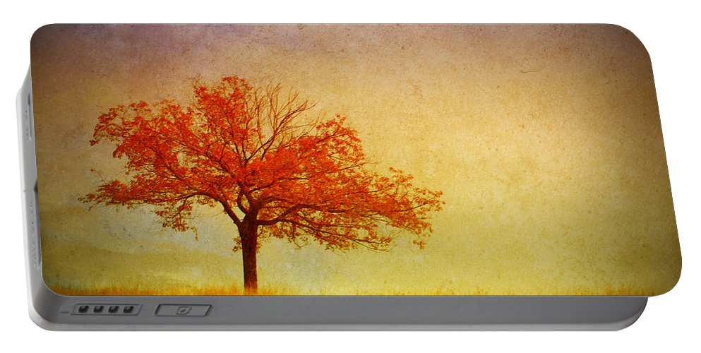 Tree Portable Battery Charger featuring the photograph The Wednesday Tree by Tara Turner
