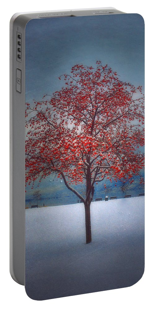 Tree Portable Battery Charger featuring the photograph The Winter Berries by Tara Turner