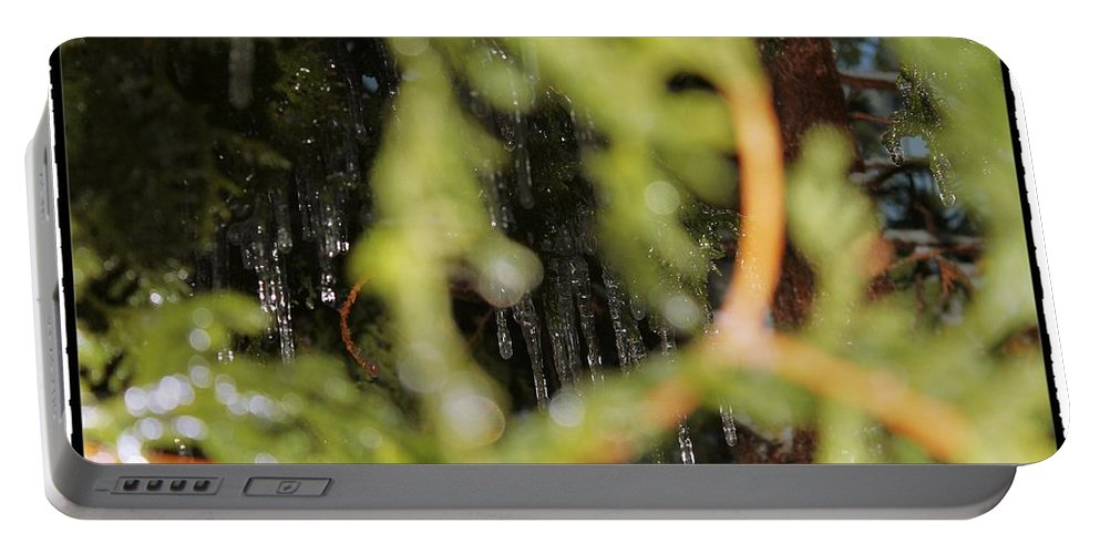 Perspective Portable Battery Charger featuring the photograph The Winter Hides Beyond The Green by Mario MJ Perron