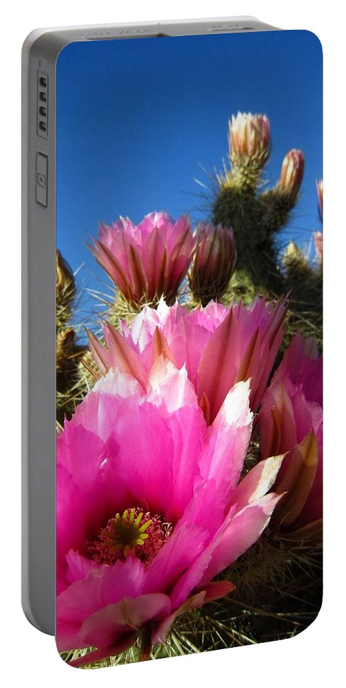 Desert Portable Battery Charger featuring the photograph They Call Me Hedgehog by Nelson Strong