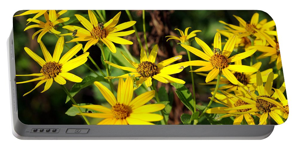 Beautiful Portable Battery Charger featuring the photograph Thin-leaved Sunflower by Jack R Perry