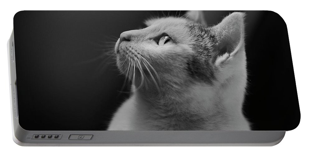 Cat Portable Battery Charger featuring the photograph Thinking Of Mouse by Olga Valjakova