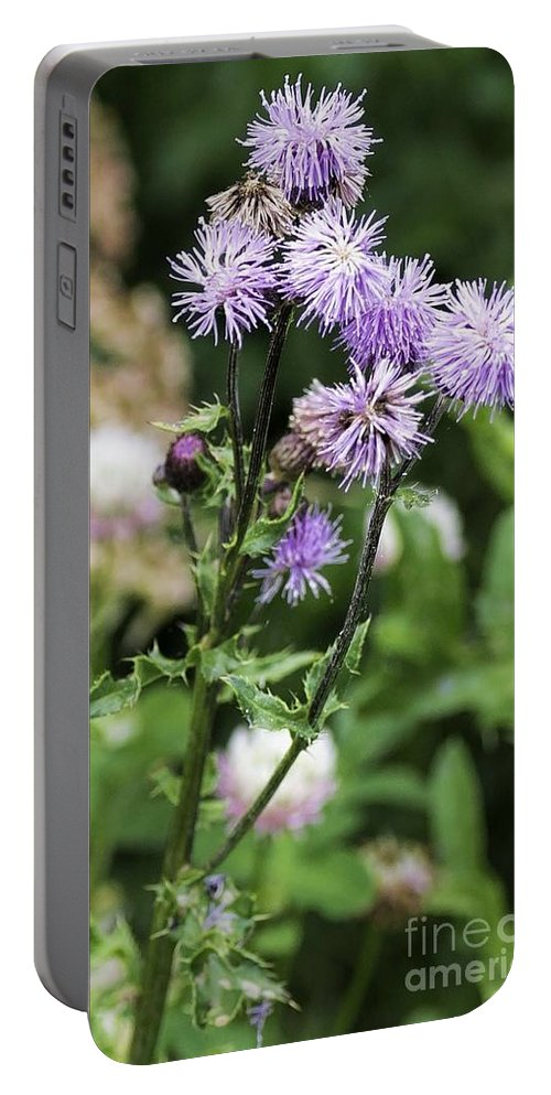 Thistle Portable Battery Charger featuring the photograph Thistle Flower by Les Palenik
