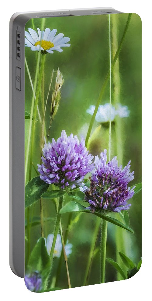Clover Portable Battery Charger featuring the photograph Clover And Daisies by Belinda Greb